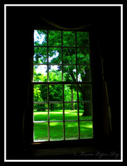Window with a view (Kentuckiana (In & Out of Flickr)) Tags: summer tree green window nature searchthebest kentucky louisville orton locustgrove blueribbonwinner ilovegreen allrightsreserved outstandingshots flickrsbest artlibre anawesomeshot ultimateshot superbmasterpiece