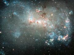 july_NGC4449_e1
