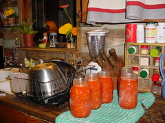 Tomatoes in the jars