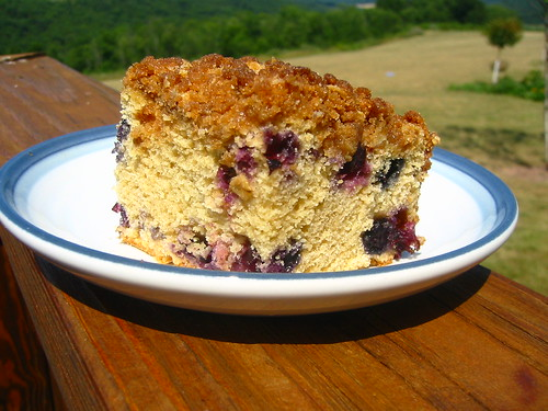 Blueberry Buckle (158-5848_IMG)