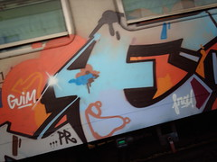 Graffitied trains (hugovk) Tags: summer italy holiday train florence italia carriage july trains pisa tuscany firenze toscana hvk 2007 heinkuu guim graffitied imag0962