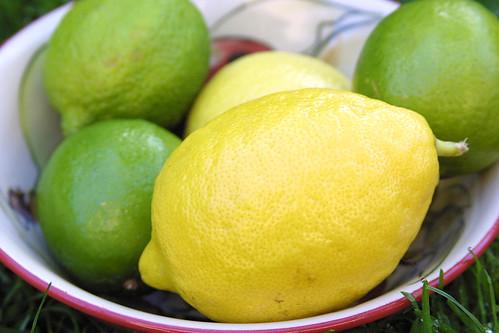 Lemons 'n Limes