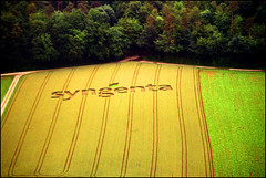 17A_0623 (Katarina 2353) Tags: film plane landscape photography switzerland nikon view image map swiss ad paisaje aerial fields agriculture paysage priroda tájkép syngenta pejzaž katarinastefanovic katarina2353