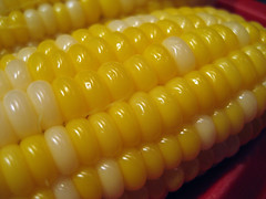 honey_n_pearl_corn_7_2007_b