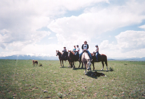 Horseback riding near Red Lodge.