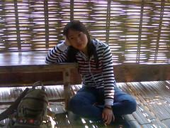 bao tang dt (cobebandiem1512) Tags: gau ablum