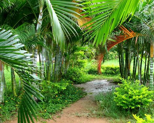 Madivala Park