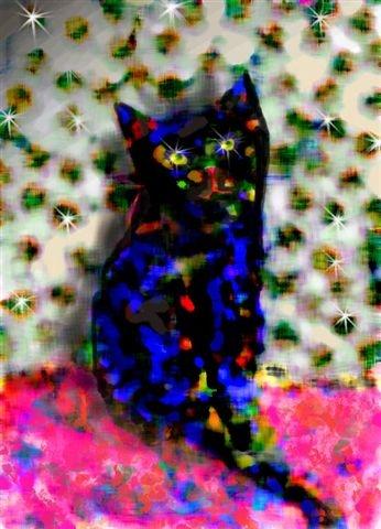 חתול 3