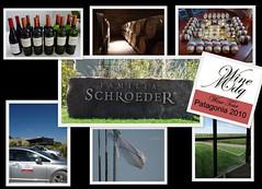 Schroeder WineMDQ