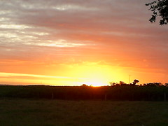 por do sol Brasil Echapora SP foto Nilceia Gazzola nilgazzola (nilgazzola) Tags: brasil sp fotos nil minhas echapora gazzola nilgazzola