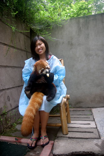 Me & the Red Panda