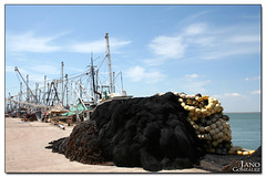 Yavaros (JANO.) Tags: red pez sonora canon puerto muelle mar barcos peces rebelxt jano sardinas yavaros