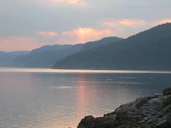 Belugas having diner (ylarrivee) Tags: 2005 voyage hiking tadousac