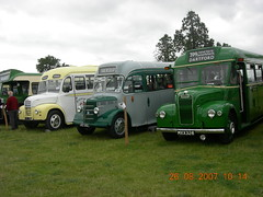 Load of old buses