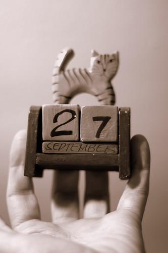 Kalender kat