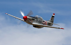 La Pistolera (EverydayTuesday) Tags: speed fighter aircraft nevada wwii fast mustang reno warbird rara prs 2010 p51 fenceline p51d 70300is stead airracing renoairraces northamericanaviation propblur canonef70300mmf456isusm tf51 pylonracing rodlewis canon40d lapistolera tf51d nationalchampionshipairraces valleyofspeed pylonracingseminar