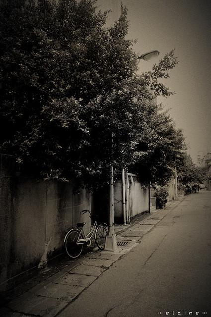 ::: 溫州街散步隨拍 :::
