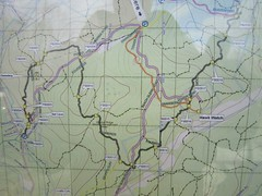 Wildcat Ridge Trail Map Photo