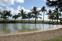 Airlie Beach Lagoon1