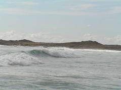 Surf's up (temmascamppurple) Tags: sea australia tasmania tassie