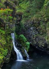 Road to Hana (Oldvidhead) Tags: pool hawaii waterfall nikon maui hana tropical d200 nikondigital roadtohana eastmaui ericlarson nikond200 oldvidhead highway360 elarson