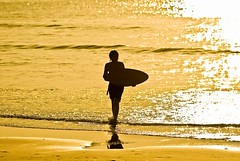 The Yellow Sands... (d_oracle) Tags: boy sunset sea sun reflection water silhouette yellow landscape coast kid zonsondergang nikon waves belgium action shakespeare wave zee shore d200 geel zon 70200mm skimboard kust wenduine abigfave