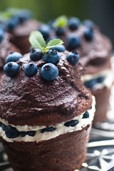 Handmade chocolate cupcakes filled with blueberry cream and topped with dark chocolate ganache and some more of these absolutely delicious wild blueberries