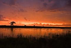 Stormy Sunset (baldwinm16) Tags: sunset cloud storm nature weather clouds illinois cumulus thunderstorm prairie storms thunder severe thunderstorms severeweather springbrook scud skud scuds skuds springbrookprairie crookedslough illinoisthunderstorms illinoisthunderstorm