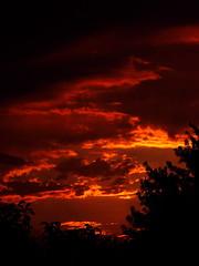 Sunrise just before the thunderstorm (MacSmiley) Tags: cloud storm southdakota sunrise canon dawn powershot explore cumulus thunderstorm thunder 2007 thunderhead severeweather peopleschoice blueribbonwinner supershot interestingness161 flickrsbest s3is jehovahscreation imagekind macsmiley 922007 flickrdiamond justbeforeamorningthunderstorm i500wowiekazowie cumuluscastellanus southdakotathunderstorm