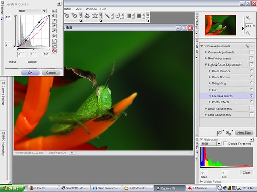 Nikon Capture NX adjustments made to the grasshopper photo