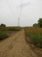 Field road at the Oxbow