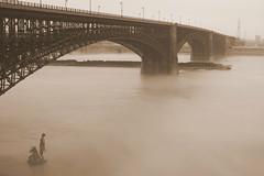Eads Bridge, St. Louis, Missouri, USA (sepia) (Cindy シンデイー) Tags: goldstaraward
