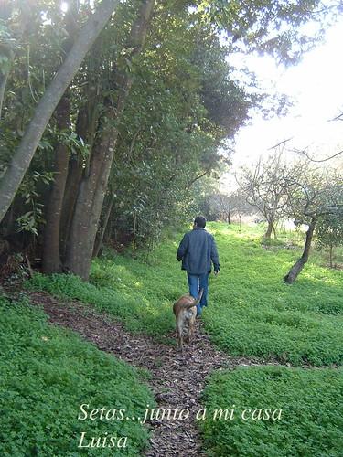 paseo con Duna