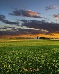 Go the Distance (Phil~Koch) Tags: autumn sunset fall nature wisconsin clouds sunrise landscape phil horizon scenics koch pjphoto horizons