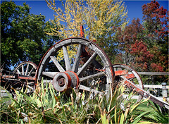 Oak Glen 15 (Marcie Gonzalez) Tags: california county old trip blue autumn trees sky usa mountains tree fall apple wheel america canon garden wagon photography town us oak san farm united north orchard glen southern socal cal rusted weathered farms apples antiques states gonzalez decor marcie wagons orchards bernardino yucaipa so marciegonzalez marciegonzalezphotography