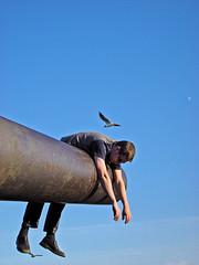 Just hanging around (Sameli) Tags: blue sky people moon seagulls man bird birds wasted fun weird rust funny gun skies seagull gull pipe dream vertigo rusty surreal weapon rusted dreams cannon artillery hanging around bizarre