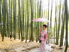 竹藪中  一回眸     The girl in the bamboo forest