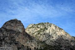 Napoleone (Renmarc) Tags: sea summer sky italy mountain nature canon fly italia mare estate sicily capo zafferano capozafferano renmarc