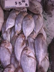 Just $3.99 a pound (EMFPhoto) Tags: philadelphia fishhead publicmarket readingmarket