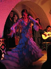 Flamenco in color