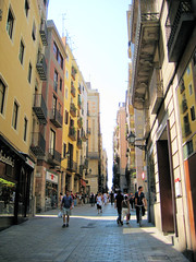 Barcelona - Baixada de la Llibreria (Carquinyol) Tags: barcelona catalonia catalunya pasoscatalans