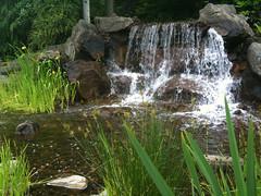 Waterfall at Columbia Tech Center