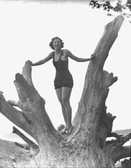 Woman in swimsuit standing on the upturned roots of a tree trunk on the shore of a lake, probably Washington State (UW Digital Collections) Tags: woman standing pose outdoors women washingtonstate swimsuit bathingsuit swimsuits swimwear maillot bathingsuits treetrunks verngorst