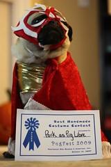 Winner, Winner, Chicken Dinner (WeeLittlePiggy) Tags: dog halloween puppy pig costume pug pork pugfest