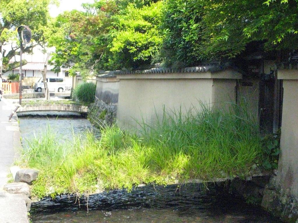 2007.5.27上賀茂・社家の町並通り8