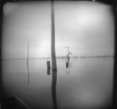 lousiana bayou before hurricane katrina (amanda koster) Tags: dark grey solitude moody cloudy neworleans hurricanekatrina bayou cypresstrees levy levies louisianabayou rowboatwater