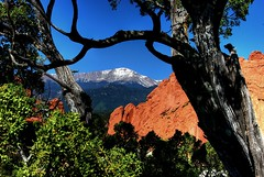 Pikes Peak Natural Frame (iceman9294) Tags: bravo gardenofthegods professional juniper pikespeak chriscoleman naturesfinest supershot outstandingshots abigfave impressedbeauty superbmasterpiece diamondclassphotographer flickrdiamond superhearts iceman9294 christopherturnerphotography