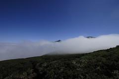雲海から頭を出す十勝岳