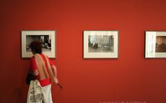 documenta 12 | Ahlam Shibli / Goter | 2002 | Fridericianum