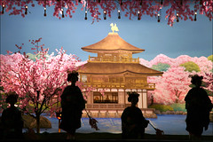 F I N A L E : Miyako Odori (mboogiedown) Tags: travel beauty japan cherry asian japanese dance spring kyoto asia traditional blossoms culture maiko geiko geisha sakura tradition finale miyako kansai kinkakuji silohuette odori discoverkyoto dancesoftheoldcapital